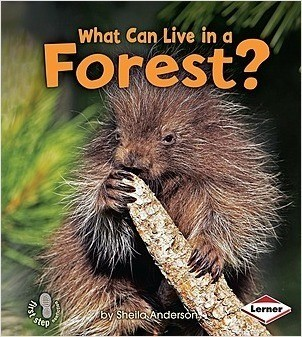 Cover: What Can Live in a Forest?