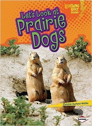 Cover: Let's Look at Prairie Dogs