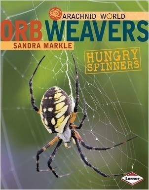 Cover: Orb Weavers: Hungry Spinners