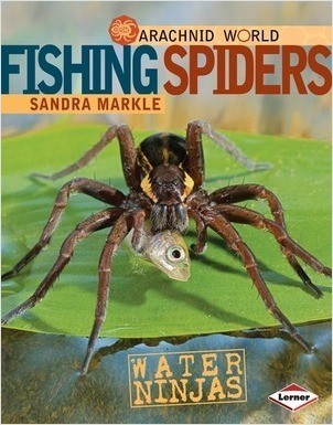 Cover: Fishing Spiders: Water Ninjas