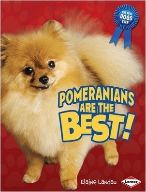 Cover: Pomeranians Are the Best!