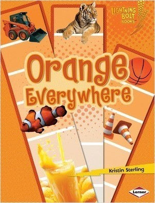 Cover: Orange Everywhere