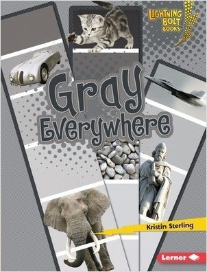 Cover: Gray Everywhere