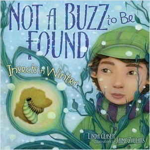 Cover: Not a Buzz to Be Found: Insects in Winter