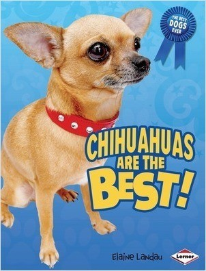 Cover: Chihuahuas Are the Best!