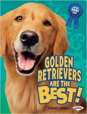 Cover: Golden Retrievers Are the Best!