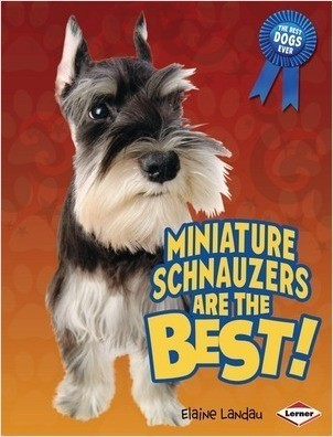 Cover: Miniature Schnauzers Are the Best!