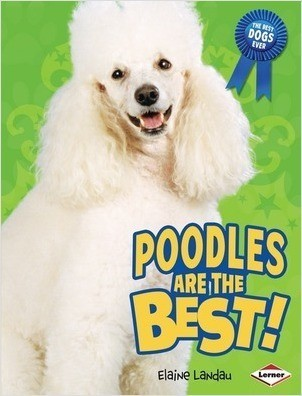 Cover: Poodles Are the Best!