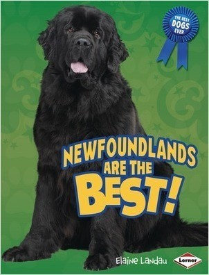 Cover: Newfoundlands Are the Best!