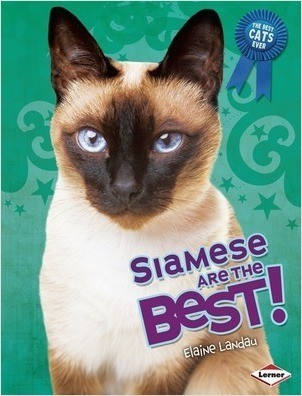Cover: Siamese Are the Best!
