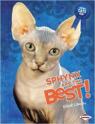 Cover: Sphynx Are the Best!