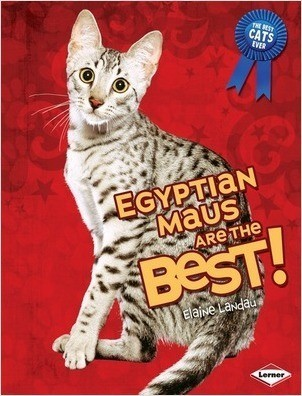 Cover: Egyptian Maus Are the Best!