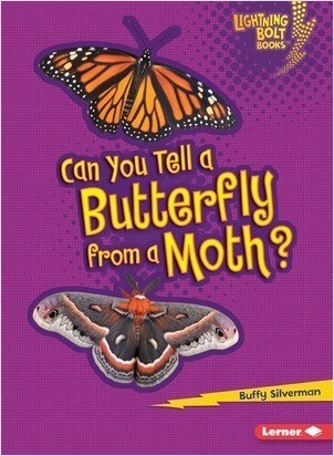Cover: Can You Tell a Butterfly from a Moth?