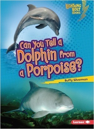 Cover: Can You Tell a Dolphin from a Porpoise?