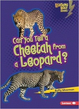 Cover: Can You Tell a Cheetah from a Leopard?