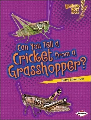 Cover: Can You Tell a Cricket from a Grasshopper?