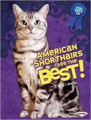 Cover: American Shorthairs Are the Best!