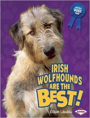 Cover: Irish Wolfhounds Are the Best!