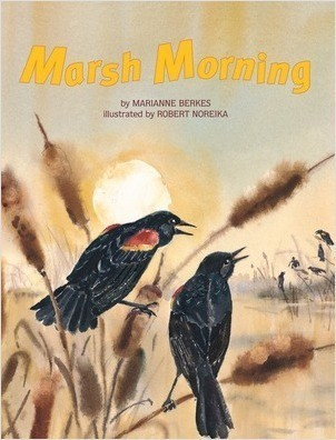 Cover: Marsh Morning