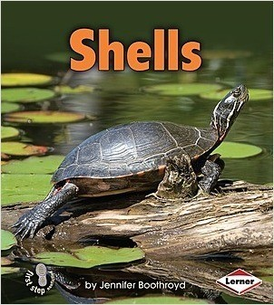 Cover: Shells