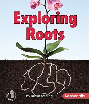 Cover: Exploring Roots