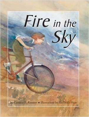 Cover: Fire in the Sky