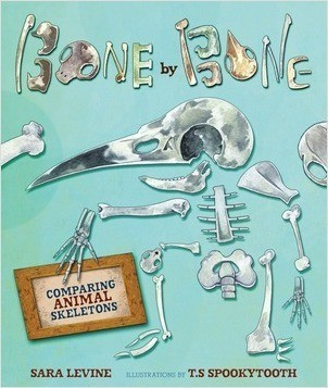 Cover: Bone by Bone: Comparing Animal Skeletons
