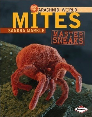 Cover: Mites: Master Sneaks