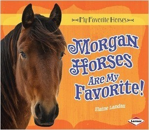 Cover: Morgan Horses Are My Favorite!