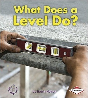 Cover: What Does a Level Do?