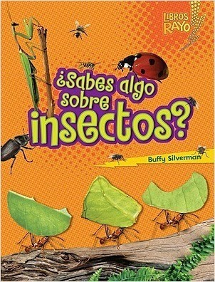Cover: ¿Sabes algo sobre insectos? (Do You Know about Insects?)