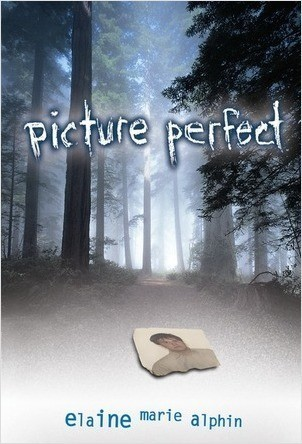 Cover: Picture Perfect