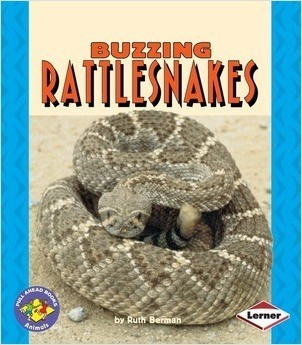 Cover: Buzzing Rattlesnakes