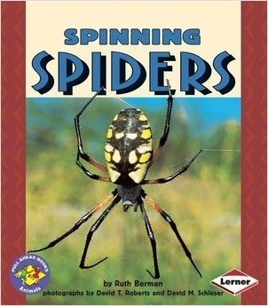 Cover: Spinning Spiders