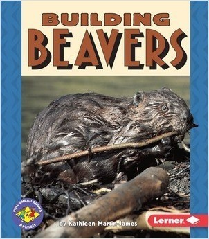 Cover: Building Beavers