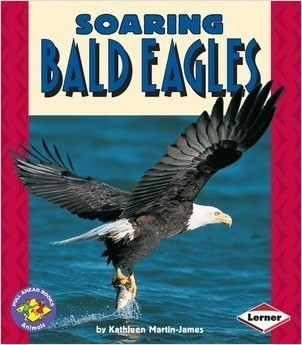 Cover: Soaring Bald Eagles