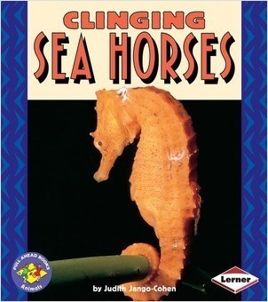 Cover: Clinging Sea Horses