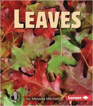 Cover: Leaves