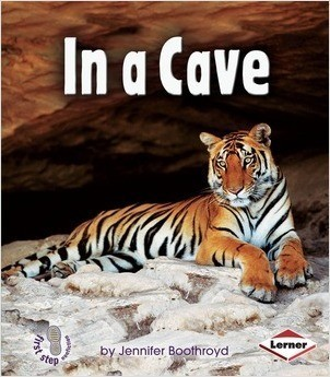Cover: In a Cave