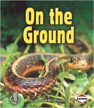 Cover: On the Ground