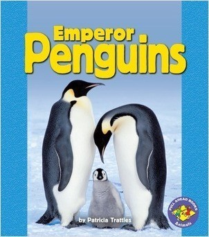 Cover: Emperor Penguins