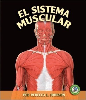 Cover: El sistema muscular (The Muscular System)