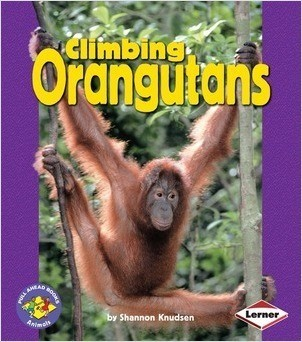 Cover: Climbing Orangutans