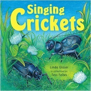 Cover: Singing Crickets