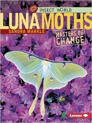 Cover: Luna Moths: Masters of Change