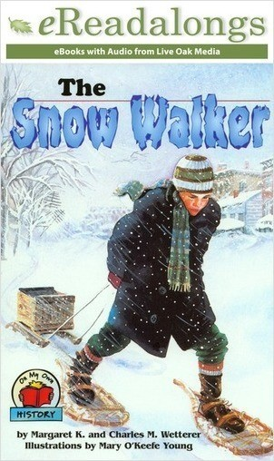 Cover: The Snow Walker