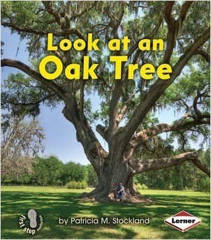 Cover: Look at an Oak Tree