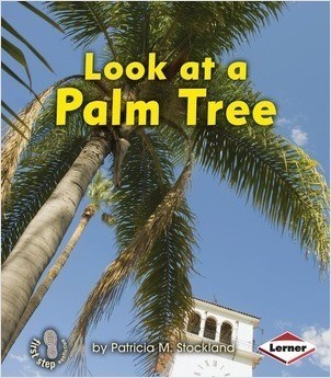 Cover: Look at a Palm Tree