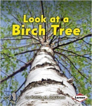 Cover: Look at a Birch Tree