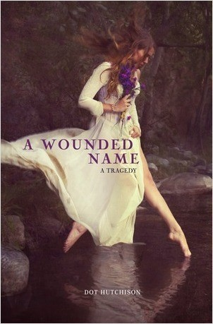 Cover: A Wounded Name